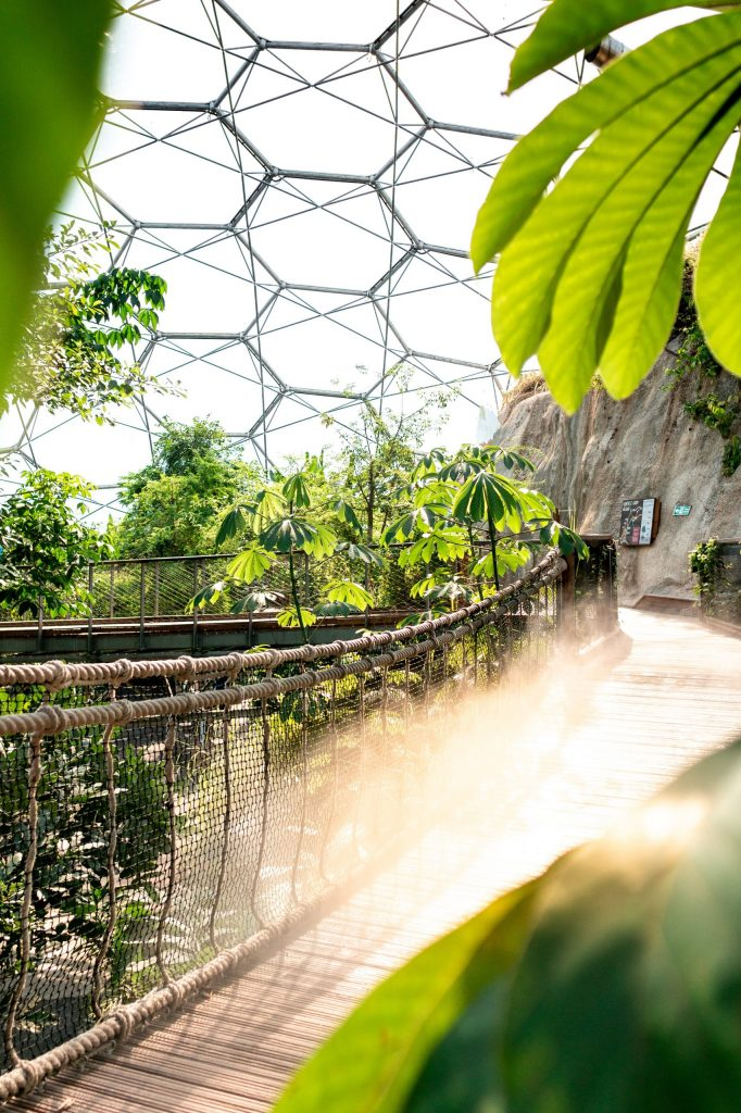 Bike Hire for the Eden Project